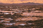 Mojave Desert Mud-flats 4-4-04
